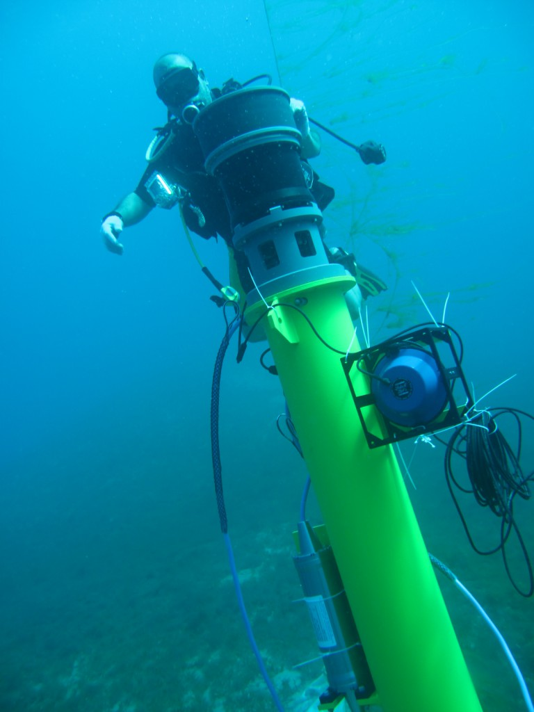 A diver completes the installation of Sentinel sonar heads and Scylla underwater loudhailers